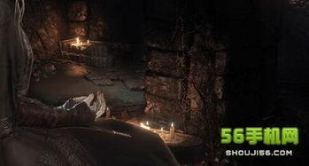 暗魂冰血-之后打过一个大树boss之后,传火祭祀场坐在王座的矮子npc可以用冰...