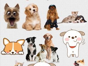 卡通可爱小狗狗造型PNG素材图片下载素材