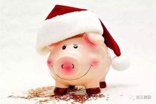 怎么画一头猪