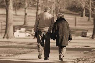从军恋走到军婚的 鹊桥 之恋-最美的不是热恋中的情侣,而是走过沧桑岁月的老人 MsGao