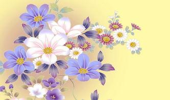 花卉简笔画大全 植物花卉图片大全-植物花卉简笔画 牵牛