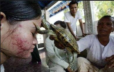人和狗做爱真人-生吞活鱼暴力性爱 想不到的重口味治病药方
