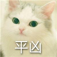 表情 超凶猫表情包 超凶猫微信表情包 超凶猫QQ表情包 发表情...