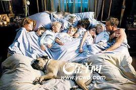 11月23日,家庭喜剧电影一幕,猫猫狗狗大人孩子大被同眠-世象图 动...