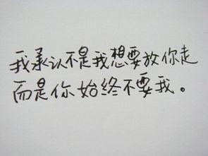 ...情从来就不会等一个人 手写文字图片
