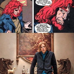 DC宇宙   闪电侠穿越而来提醒蝙蝠侠路易斯