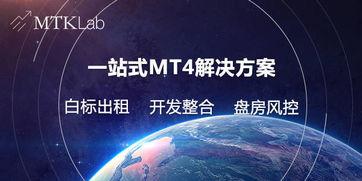 MT4平台搭建需要有哪些花费