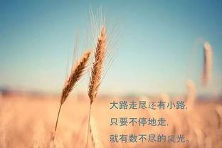 早安励志语录 早安心语励志句子