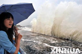 ...东半岛东部沿海兴风作浪