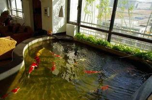 阳台自建锦鲤鱼池设计图 5款阳台浇筑家庭小鱼池养锦鲤风水布局图