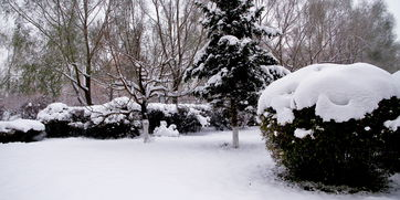 小雪时节如何养生