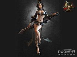 龙尊夺国传-49you网页游戏平台是国内首家