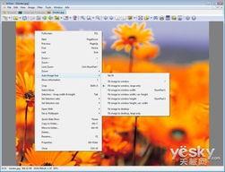 方便 ; 可以批量转换文件格式,创建缩略图并生成网页,还可自己制...