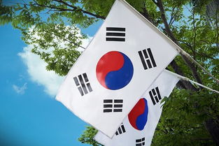 幻想破灭 韩裔英国人首尔住三个月就崩溃 就算作梦也不想回去