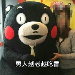 熊本熊表情包微信表情图 人生的九大骗局谨防上当