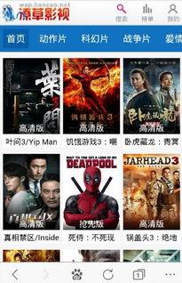 ...音先锋伦理电影免费在线观看V1.0安卓版下载