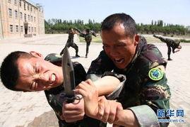 特种兵王在校园-中国西部