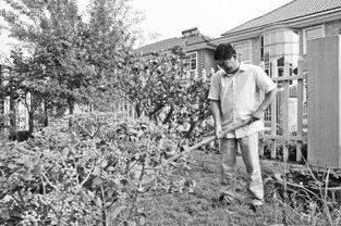 农民搬进生态新居后生活悠闲自在.-一块 生态砖 引出的乡村绿色发展...