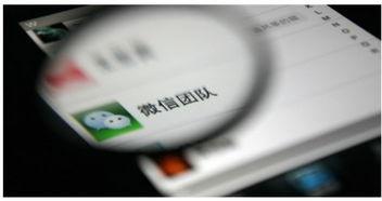 快速增加微信好友的方法有哪些