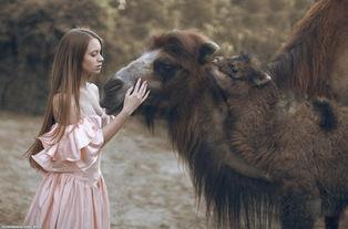...ooskool人与 人与动物兽性大发图片 人与狼狗配种图片大全 实时关注