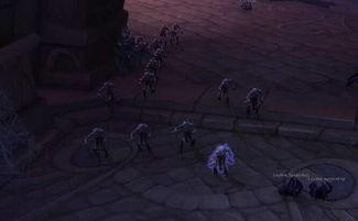 ...得就是小弟多 魔兽世界 苏拉玛枯法者训练攻略