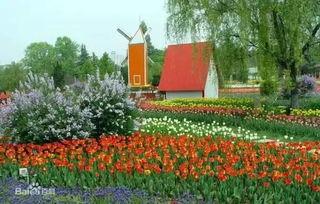 重磅 西安新植物园马上开园 怎么去 看这