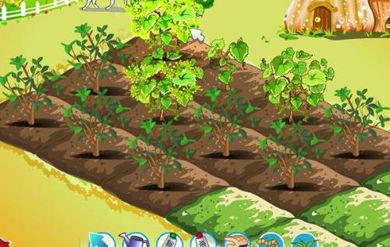 QQ空间的开心农场游戏简单但为什么好多人特别喜欢玩这个小游戏