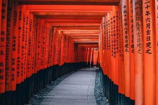 修士的学制是多久?   读完会不会... 京都大学等大学,要先了解你要申...