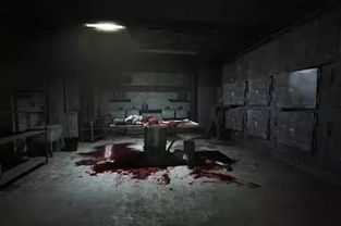 ...院式主题鬼屋 藤木病院 空降乐山,吓哭壮汉 胆小慎点