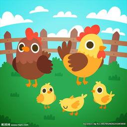 卡通公鸡母鸡小鸡插图图片