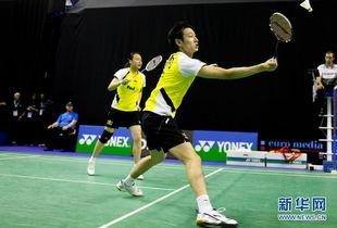 ...年世界羽联超级系列赛法国公开赛混双第三轮比赛中,中国组合张楠/...