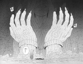 六道仙人   应该是知道十尾也是不死不灭的,所以才会将十尾的力量分...
