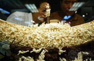 历史悠久 中国象牙雕刻艺术的起源