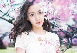 、李晨、陈赫、郑恺、王祖蓝、... 常驻女嘉宾杨颖由于怀孕生小