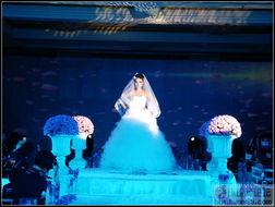 2011西安爱丽丝婚纱城堡秋冬产品发布会 2011西安爱丽丝婚纱城堡秋...