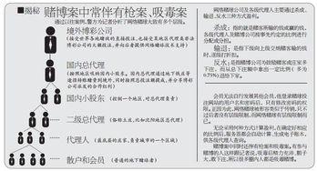 沈阳破特大跨境赌球案 涉案金额超过50亿元