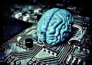 如何保养大脑,恢复大脑的活力(一)
