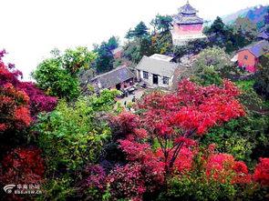 十三月的竹-10月13日周六竹峪 九华山 谭峪