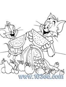 猫和老鼠手游!