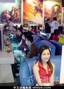 令人流连忘返的台湾成人网吧