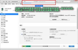 楼月QQ聊天记录恢复软件 楼月手机QQ聊天记录恢复软件 v9.0官方版...