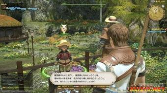 FF粉要收藏 网游 最终幻想14 重生之境 Final Fantasy XIV A Realm ...