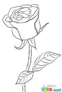 怎么画玫瑰花的简笔画