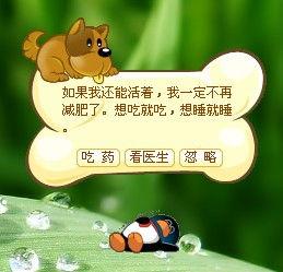 QQ宠物 QQ宠物
