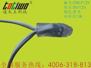 12mm黄光LED发光字外露灯串