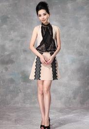 ...013夏季新品欧洲站35 39岁高领无袖杏色拼蕾丝熟女连衣裙子A字裙