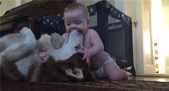 小p孩子也这么厉害友纪老师-...恶酷脸以为要把宝宝吞下肚 但几秒后..